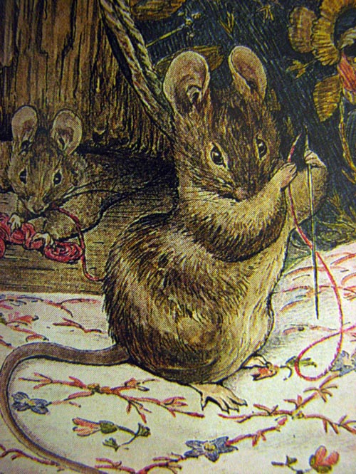brownmouse